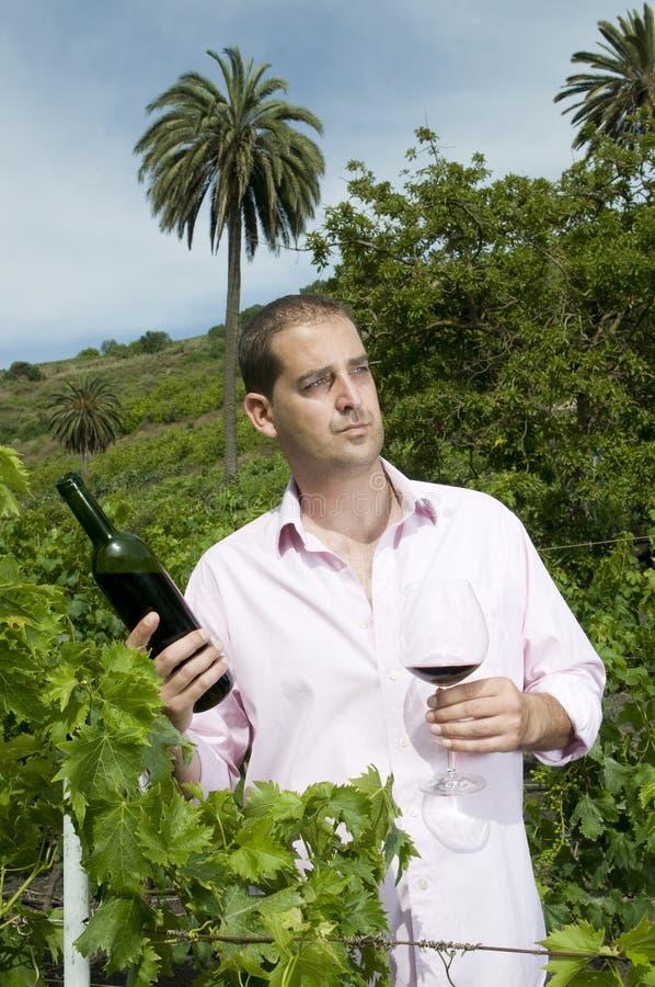 mężczyzna agrarny winnica fotografia stock
