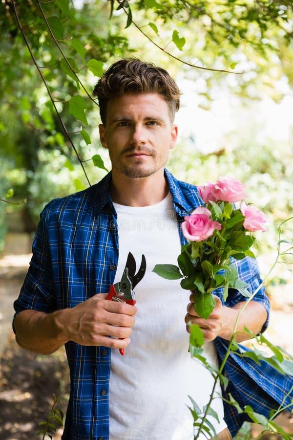 Mężczyzna arymaż kwitnie z przycinać strzyżenia w ogródzie na słonecznym dniu zdjęcia royalty free