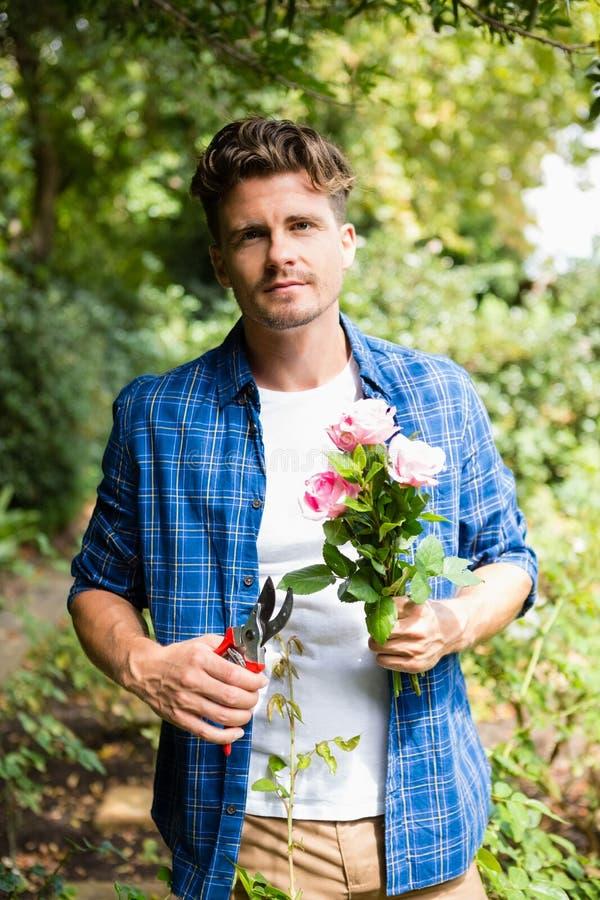 Mężczyzna arymaż kwitnie z przycinać strzyżenia w ogródzie na słonecznym dniu fotografia stock