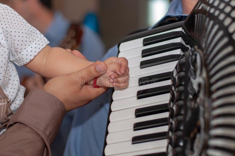 Mężczyzna bawić się akordeon palce na akordeonie obrazy royalty free