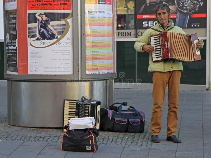 Mężczyzna bawić się akordeon plenerowego w Brno, czech zdjęcie royalty free