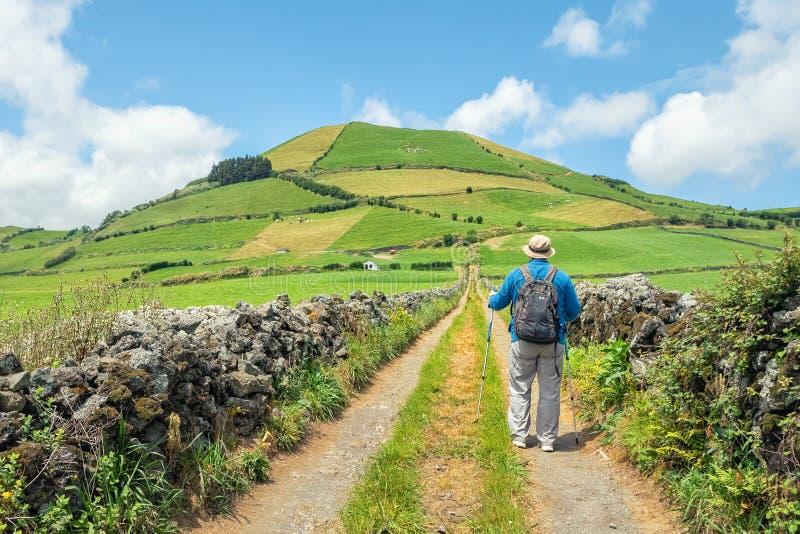 Mężczyzna chodzi wzdłuż wiejskiej drogi z trekking słupami, Azores, zdjęcia stock