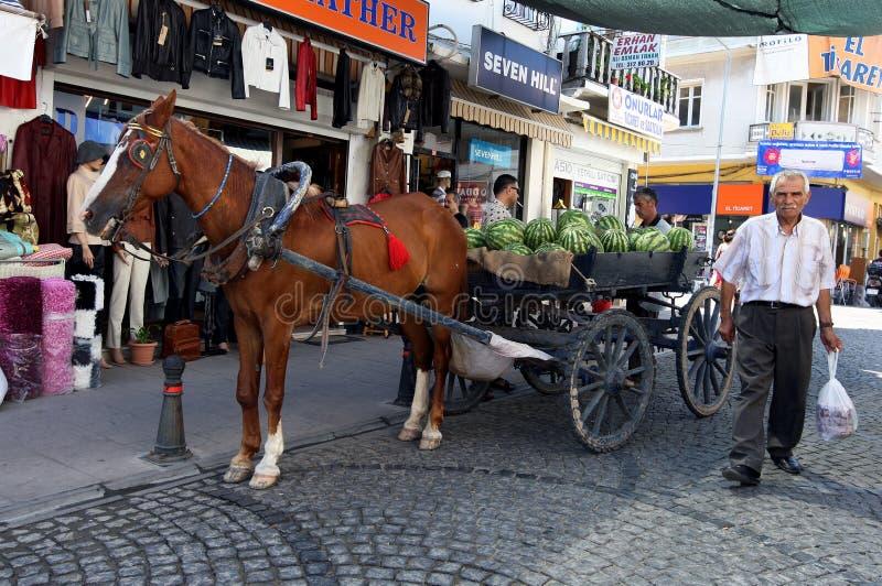 Mężczyzna chodzi za końskim ładującymi z arbuzami parkującymi na ulicie przy Ayvalik w Turcja furą i obraz royalty free