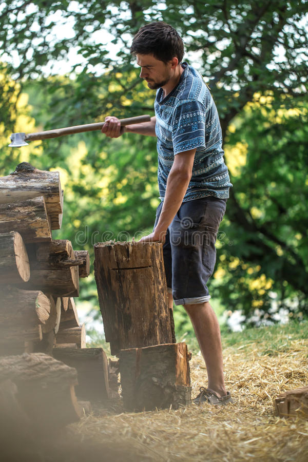 Mężczyzna ciapania drewno z cioską obraz stock