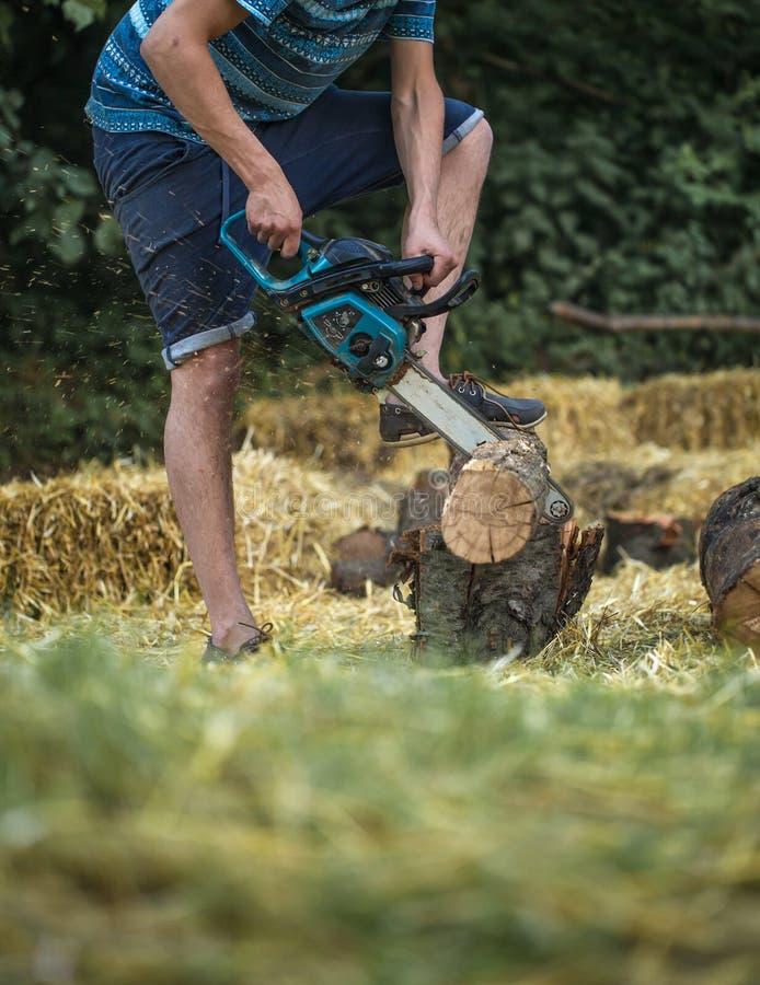 Mężczyzna ciapania drewno z piłą łańcuchową fotografia royalty free