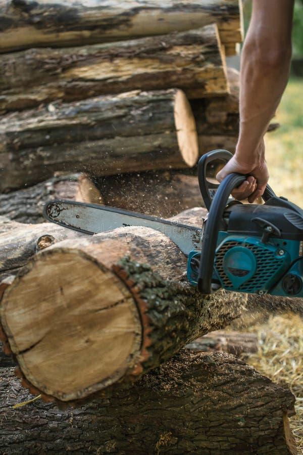 Mężczyzna ciapania drewno z piłą łańcuchową obrazy stock
