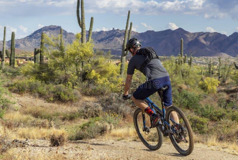 Mężczyzna góra Jechać na rowerze Szybko Na Arizona pustyni śladzie zdjęcia stock