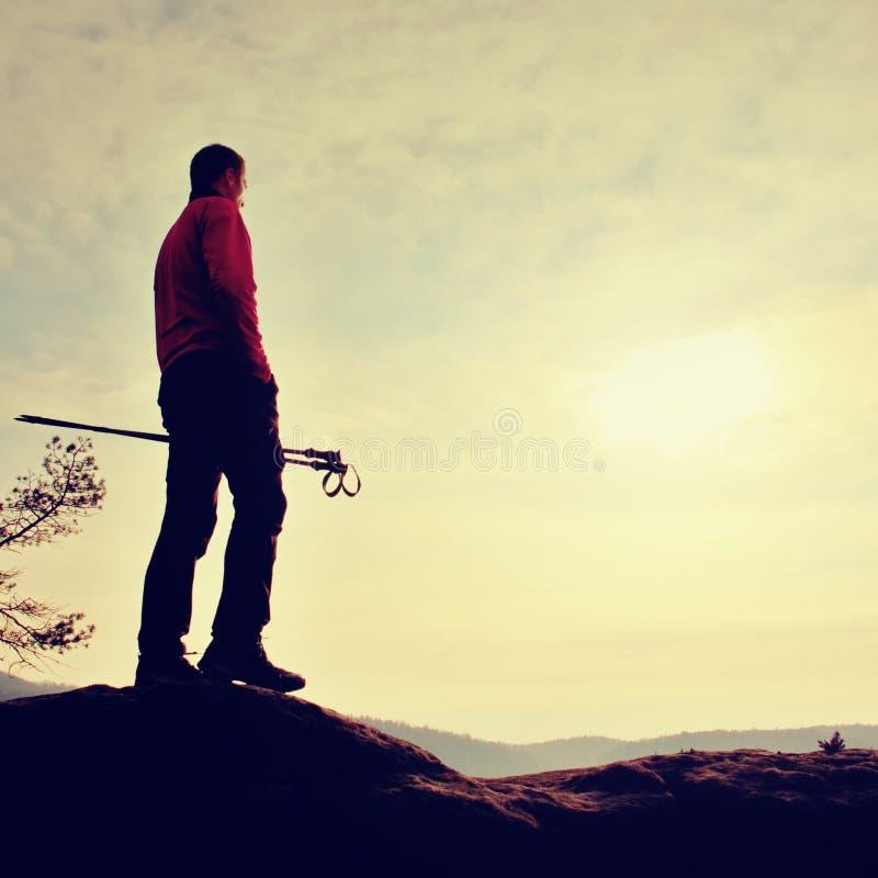 Mężczyzna hikerwith słupów trakking stojak na halnego szczytu skale Mały sosnowy bonsai drzewo r w skale, wiosna dzień fotografia stock