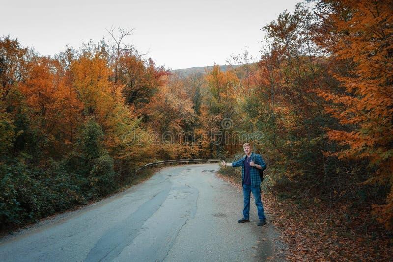 Mężczyzna hitchhikes na drodze obraz royalty free