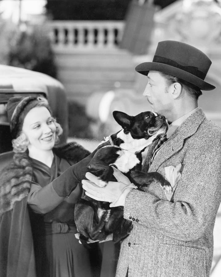 Mężczyzna i kobieta trzyma troszkę psimi (Wszystkie persons przedstawiający no są długiego utrzymania i żadny nieruchomość istnie obrazy royalty free