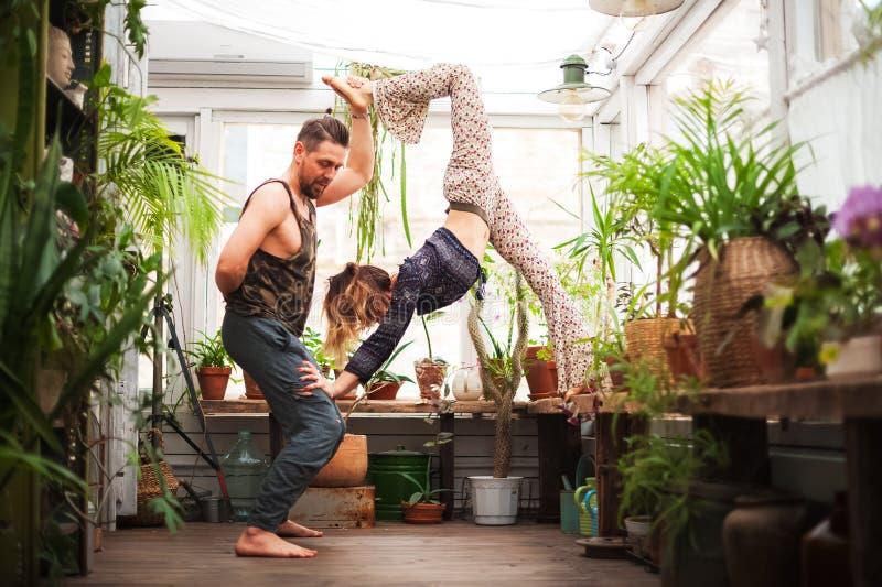 M??czyzna i kobiety ?wiczymy joga asanas w szklarni z kwiatami Pary joga obrazy royalty free