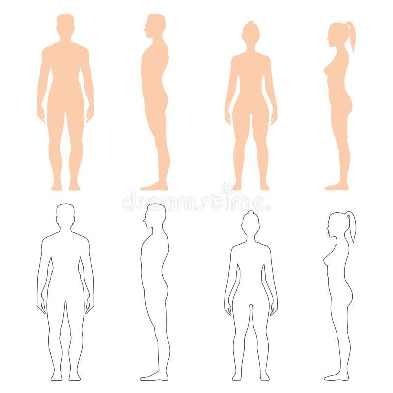 Mężczyzna i kobiety sylwetki set ilustracji