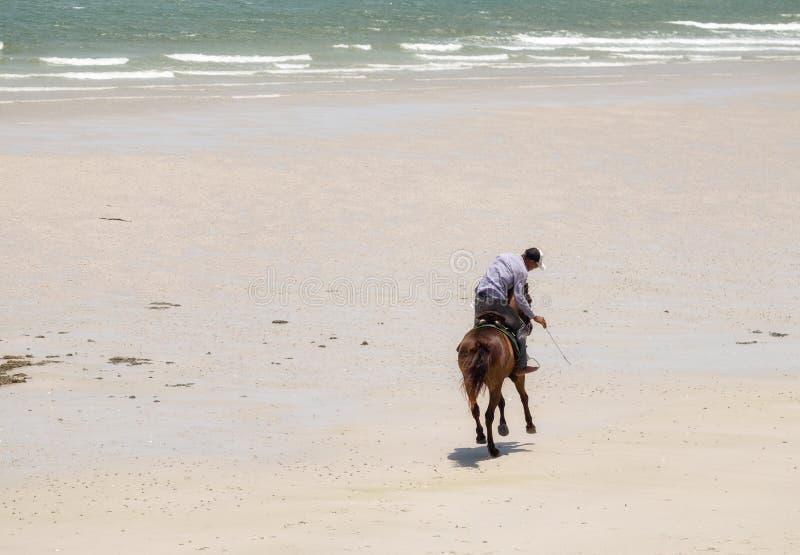 Mężczyzna jeździecki koń na plaży zdjęcie royalty free