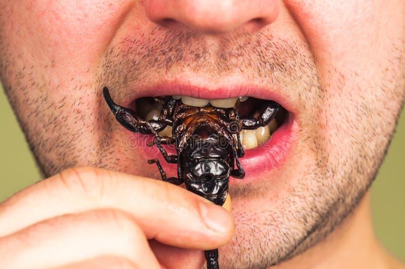 Mężczyzna je skorpionu zdjęcie royalty free