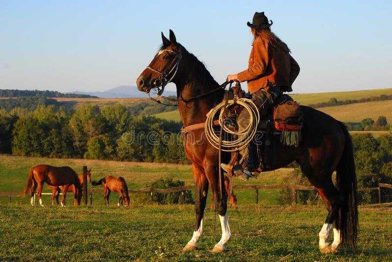 mężczyzna jego koński obsiadanie obrazy stock
