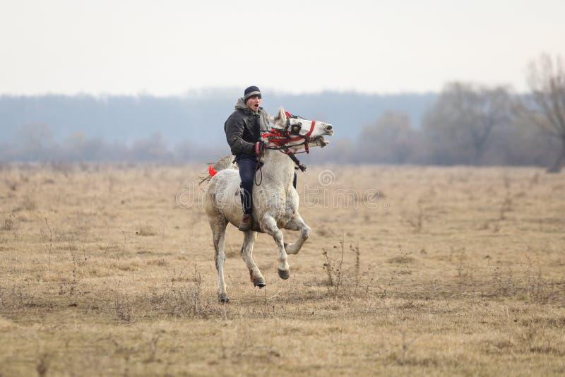 Mężczyzna jest bareback jazdą ozdabiający koń przed objawienia pańskiego świętowania końską rasą obrazy royalty free