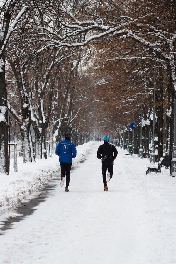 Mężczyzna jogging w parku w zima czasie fotografia royalty free