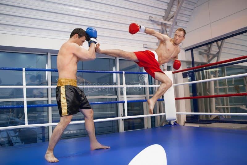 Mężczyzna kickboxing. fotografia royalty free