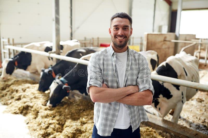 Mężczyzna lub rolnik z krowami w cowshed na nabiału gospodarstwie rolnym obrazy stock