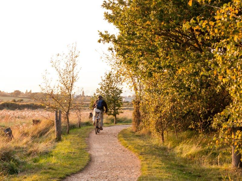 Mężczyzna na rowerze na kraj ścieżki sceny drzew słońca światła jesieni miękkim ri zdjęcie royalty free