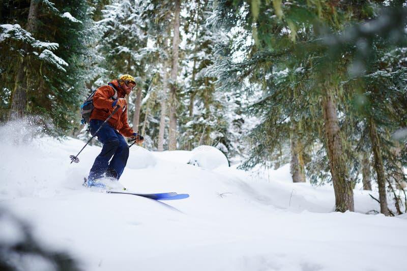 Mężczyzna narciarka jedzie freeride na prochowym śniegu w lesie obraz stock