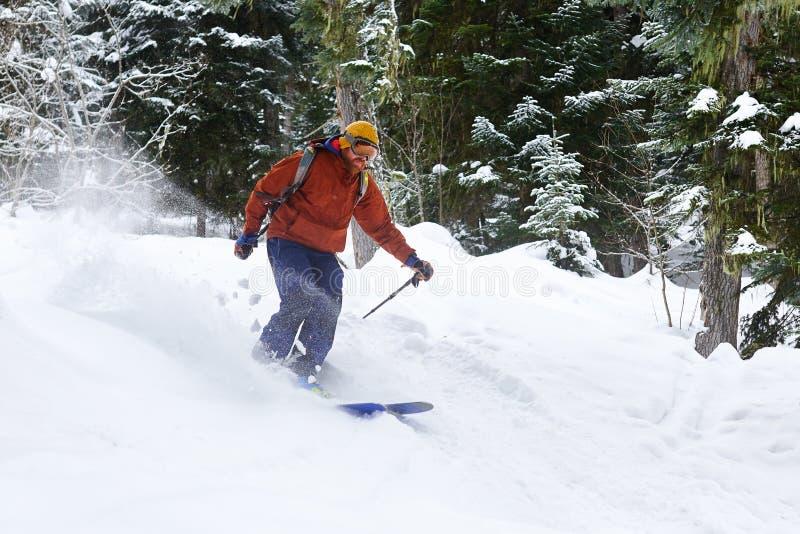 Mężczyzna narciarka jedzie freeride na prochowym śniegu w lesie fotografia royalty free