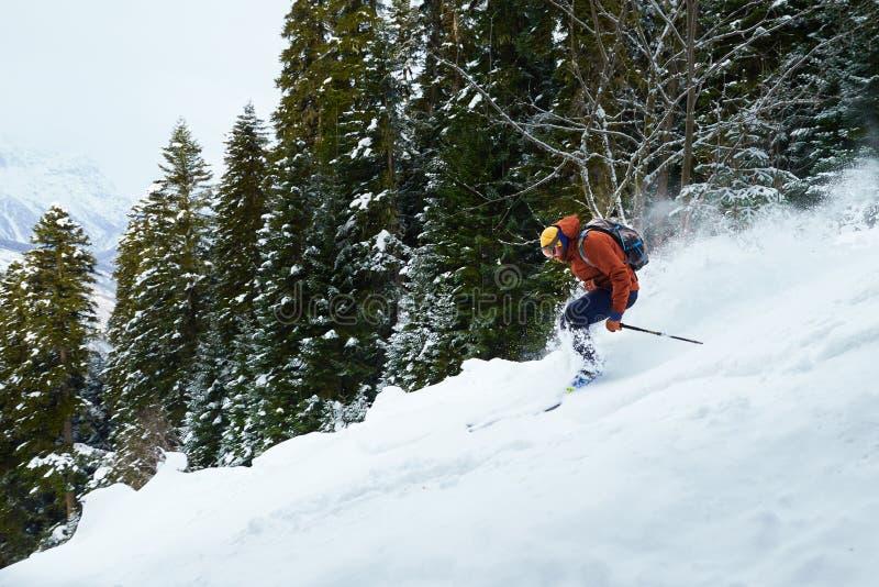 Mężczyzna narciarka jedzie freeride na prochowym śniegu w lesie obraz royalty free