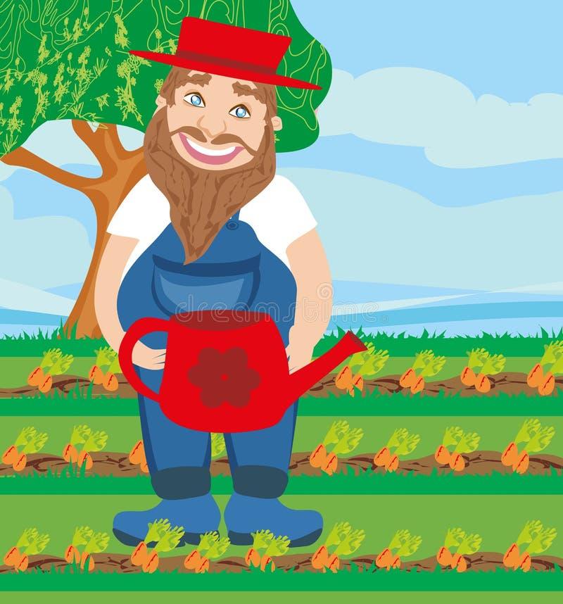 Mężczyzna nawadnia marchewki w ogródzie royalty ilustracja