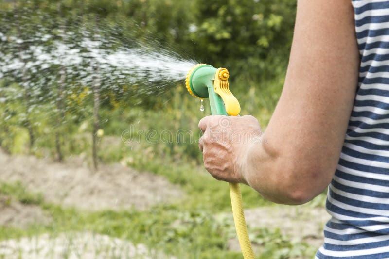 Mężczyzna Nawadnia ogród obraz stock