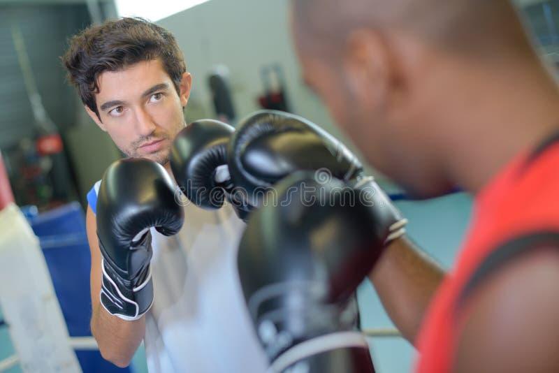 Mężczyzna obramia do each inny w bokserskim dopasowaniu obraz royalty free