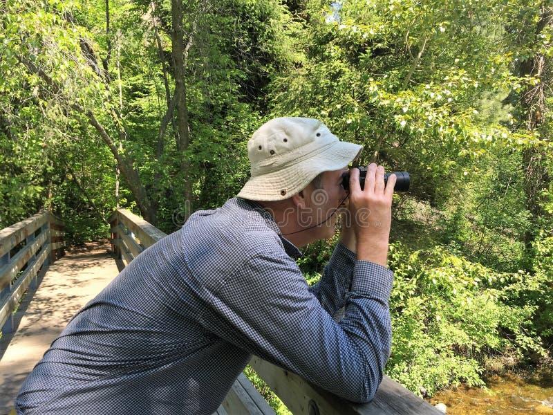 Mężczyzna obserwuje naturę fotografia royalty free