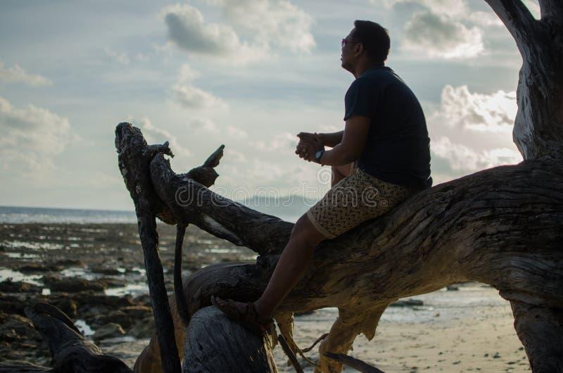 Mężczyzna obsiadanie na Spadać drzewie lub drewnach na plaży obrazy stock