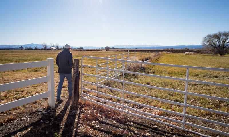 Mężczyzna odprowadzenie na gospodarstwie rolnym w Zachodnim Kolorado obraz royalty free