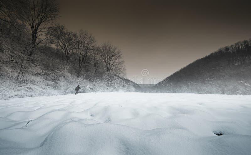 Mężczyzna odprowadzenie w zaczarowanym zima krajobrazie fotografia royalty free
