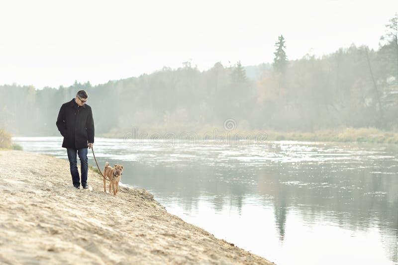 Mężczyzna odprowadzenie z psem blisko rzeki obrazy stock