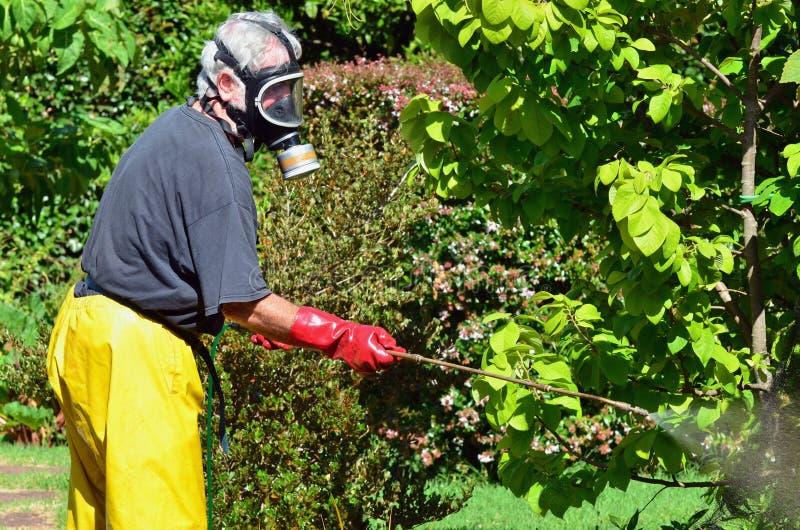 mężczyzna ogrodowe kiście zdjęcia royalty free