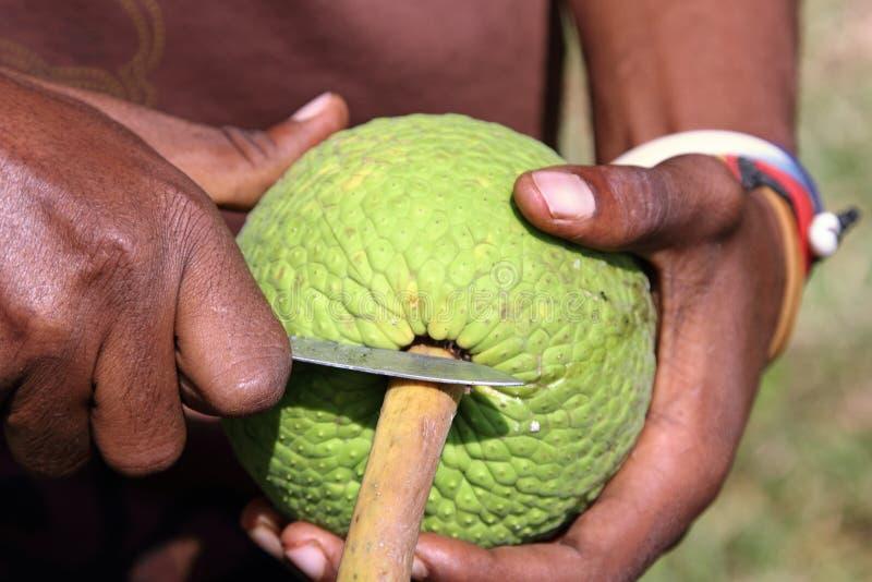 Download Mężczyzna Otwiera Breadfruit Zdjęcie Stock - Obraz złożonej z nóż, świeży: 57652250