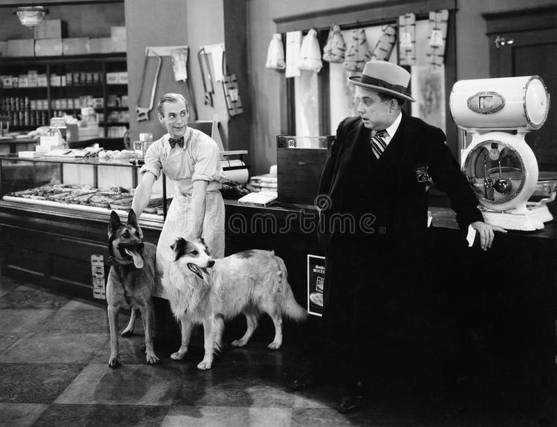 Mężczyzna patrzeje straszny przy dwa psami w masarka sklepie (Wszystkie persons przedstawiający no są długiego utrzymania i żadny zdjęcie royalty free