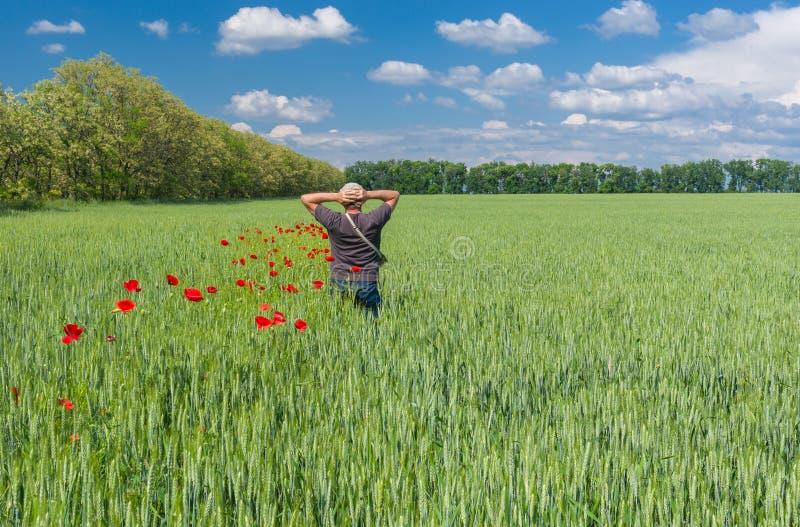 Mężczyzna podziwia piękno Ukraiński kraju krajobraz obrazy royalty free
