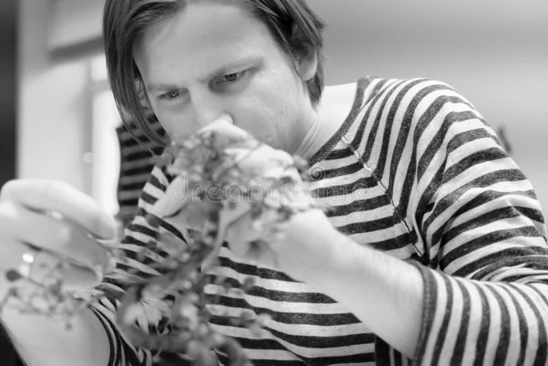 Mężczyzna pracuje z bonsai drzewem fotografia royalty free
