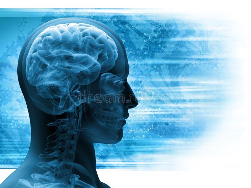 Mężczyzna promieniowanie rentgenowskie ilustracji