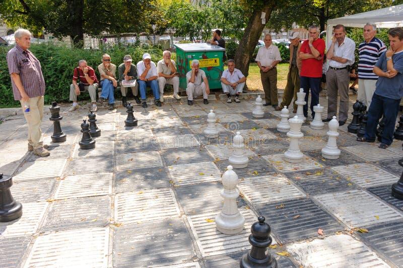 Mężczyzna przy plenerową gigantyczną szachową grze zdjęcie stock