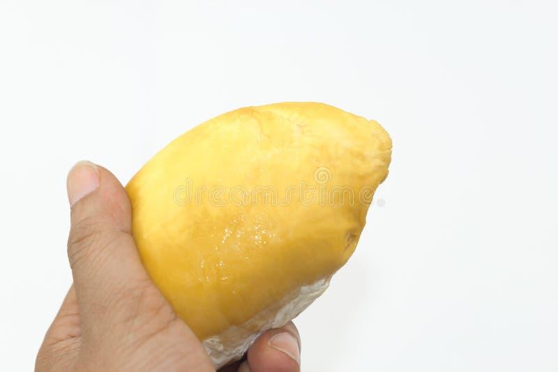 Mężczyzna ręki mienia durian odizolowywa fotografia stock