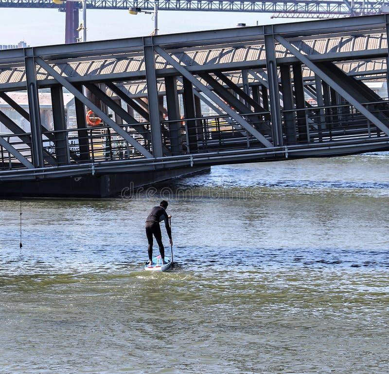 Mężczyzna robi paddle zdjęcie royalty free
