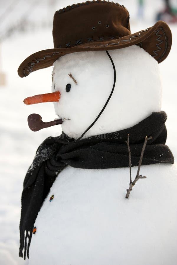 mężczyzna szczęśliwy śnieg fotografia stock
