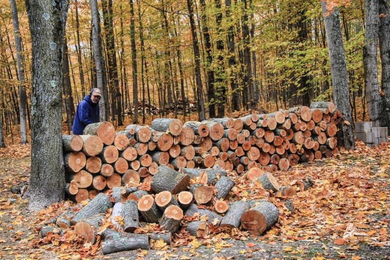 Mężczyzna sztaplowania drewno w jesieni zdjęcia stock
