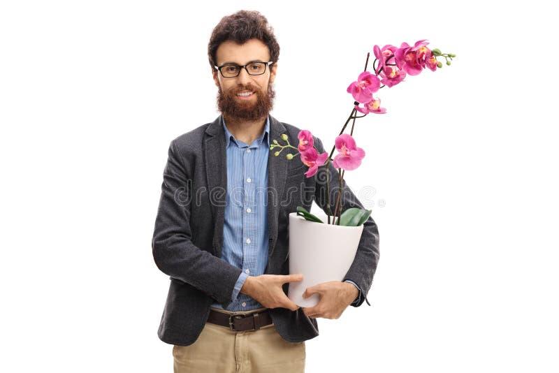 Mężczyzna trzyma storczykowego kwiatu w garnku fotografia stock