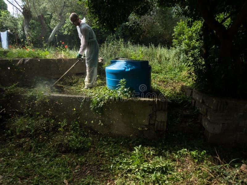 Mężczyzna używa szczotkarskiego krajacza obrazy stock