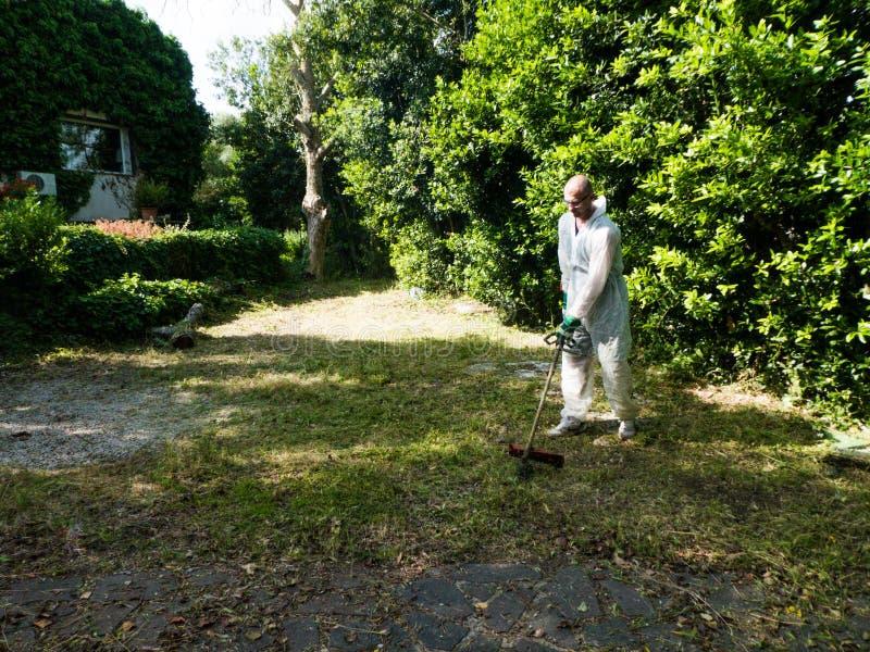 Mężczyzna używa szczotkarskiego krajacza obrazy royalty free
