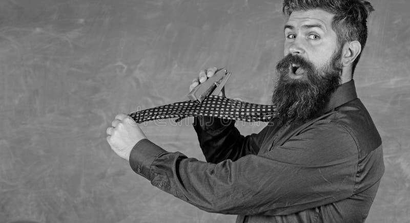 Mężczyzna use zaniedbanego zszywacza niebezpieczny sposób Modnisia nauczyciela formalnej odzieży krawat trzyma zszywacz Szkolny m zdjęcia stock